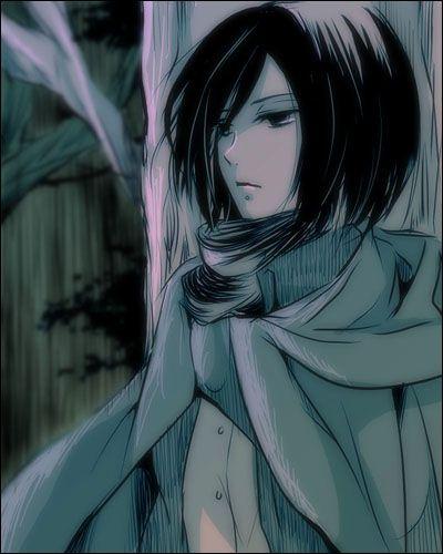 Mikasa. Attack on titan. 進撃の巨人. Shingeki no Kyojin. Anime. Illustration. Атака титанов. #SNK. #AOT