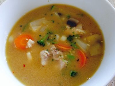 Spicy Chicken and Vegetable Soup recipe