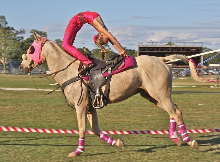Horse trick riding pictures | the show is a fast paced adrenaline rush on horseback accompanied by ...