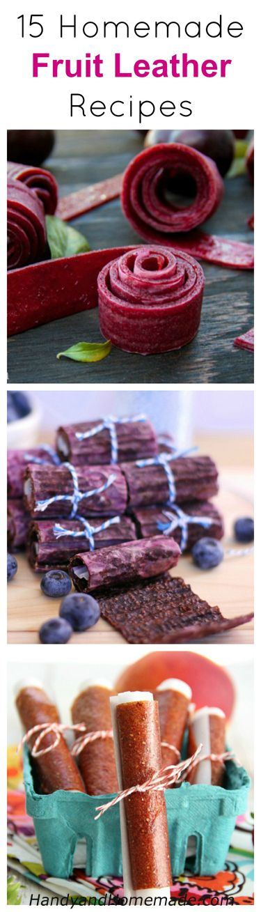15 Homemade Fruit Roll Up, Fruit Leather Snack Recipes