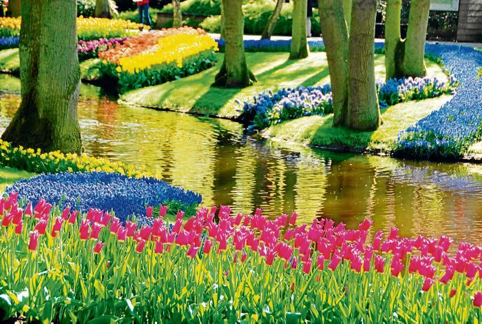 140 best images about jardin de keukenhof holanda on for Jardin keukenhof