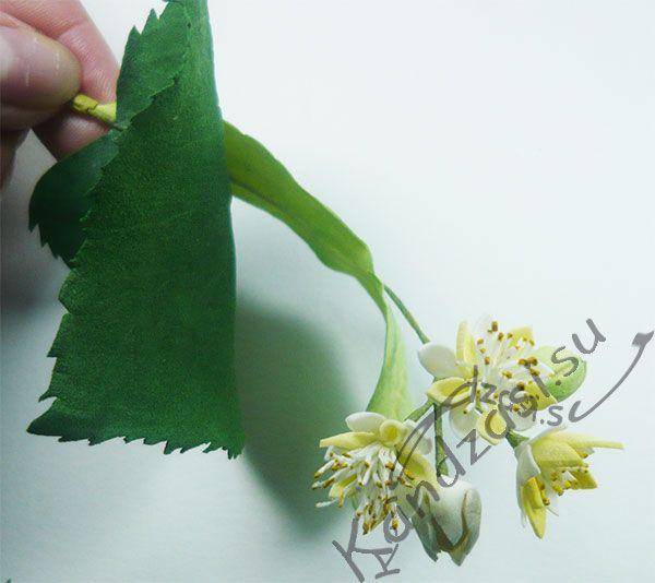 Соцветие липы из фоамирана