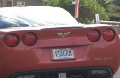 Best 25 Funny License Plate Frames Ideas On Pinterest Disney Car Accessories Car Stuff And