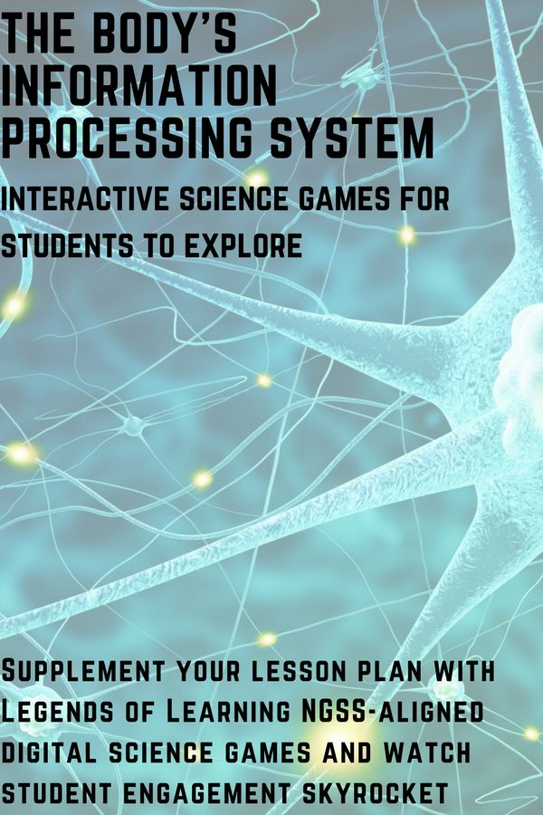 Lessons on Information Processing: games to engage students. Teaching students how the body processes information? These NGSS-aligned games will help!  Sign up for a free account and join the Legends of Learning superhero teacher community.