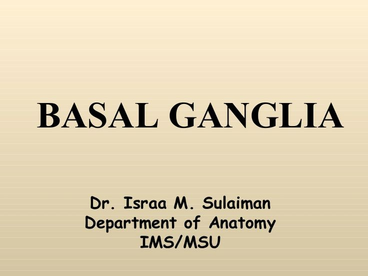 BASAL GANGLIA Dr. Israa M. Sulaiman Department of Anatomy IMS/MSU