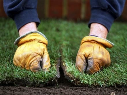 Early spring is a good time for laying turf because the risk of frost is lower, making the soil more workable. Spring is also the ideal time for sowing seed as the soil warms up and rainy days speed germination. Learn how to lay sod and sow grass seed.
