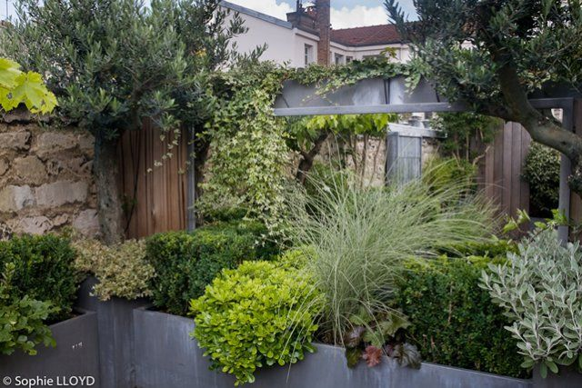 Sur les toits - Christian Fournet, Paysagiste - conception, création & entretien d'espaces verts
