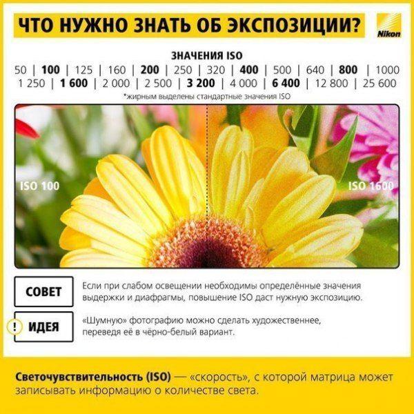 http://cs7054.vk.me/c540107/v540107747/2a2d8/wxqWN0u42ko.jpg