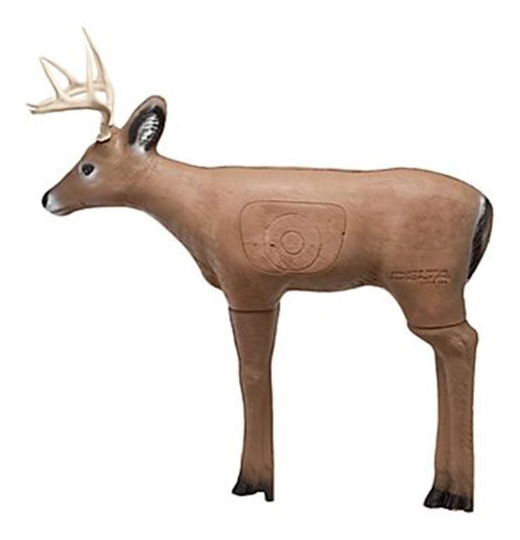 best 3d deer targets