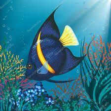 Resultado de imagen para fotos peces tropicales