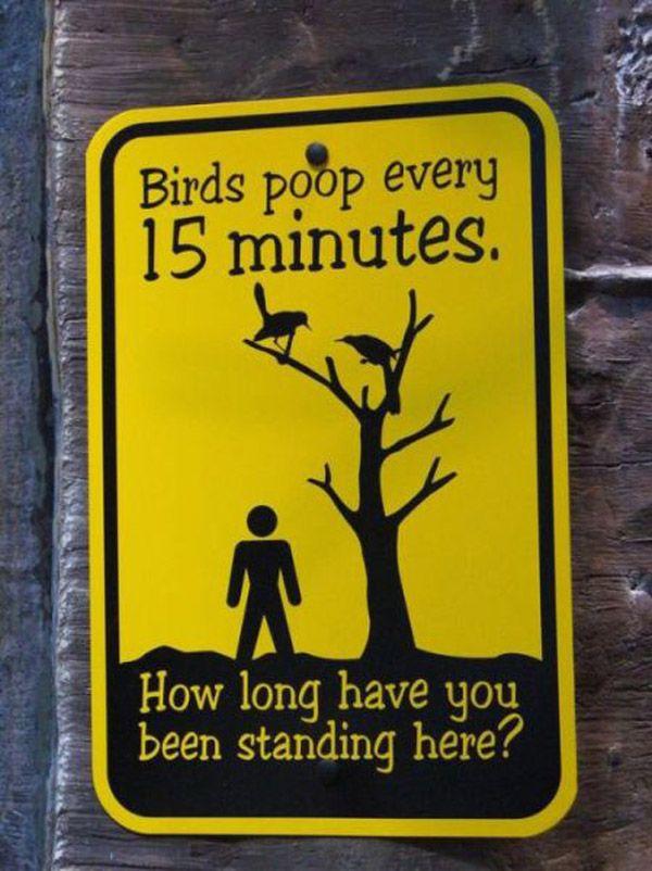 Cateva poze cu semne publice amuzante despre animale