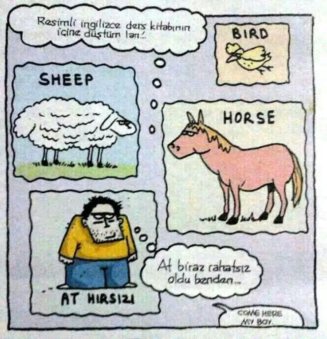 At hırsızı :)