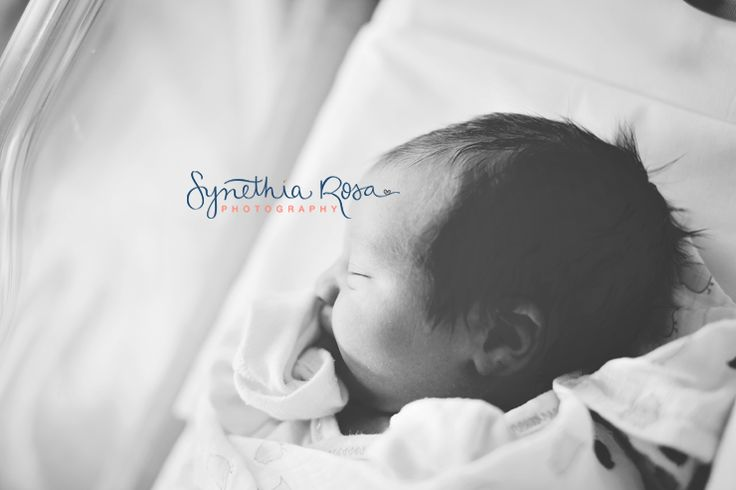 99 Best Synethia Rosa Photography Images On Pinterest Family Homes Family Houses And Family