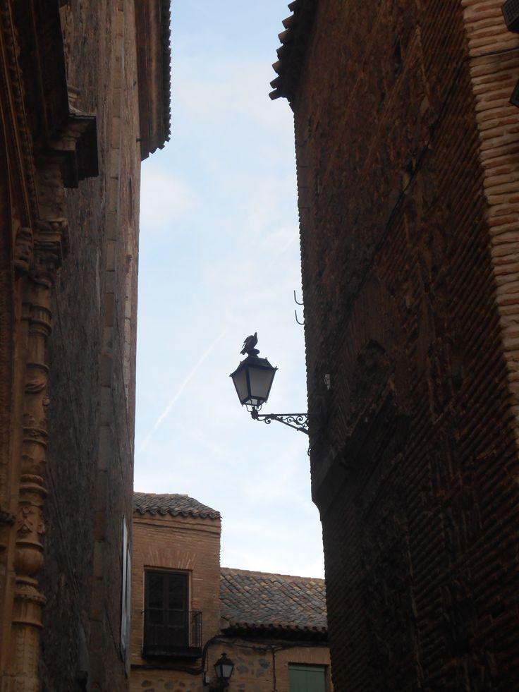 Paloma apoyada en farol de fachada a la calle de San Clemente