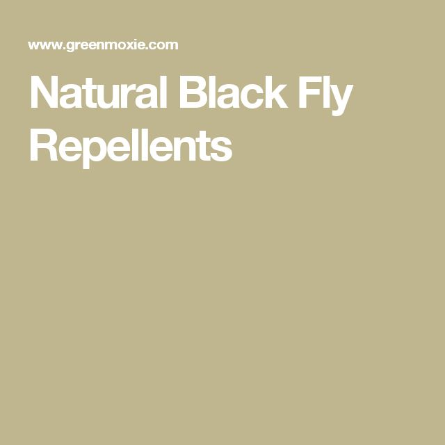 Natural Black Fly Repellents