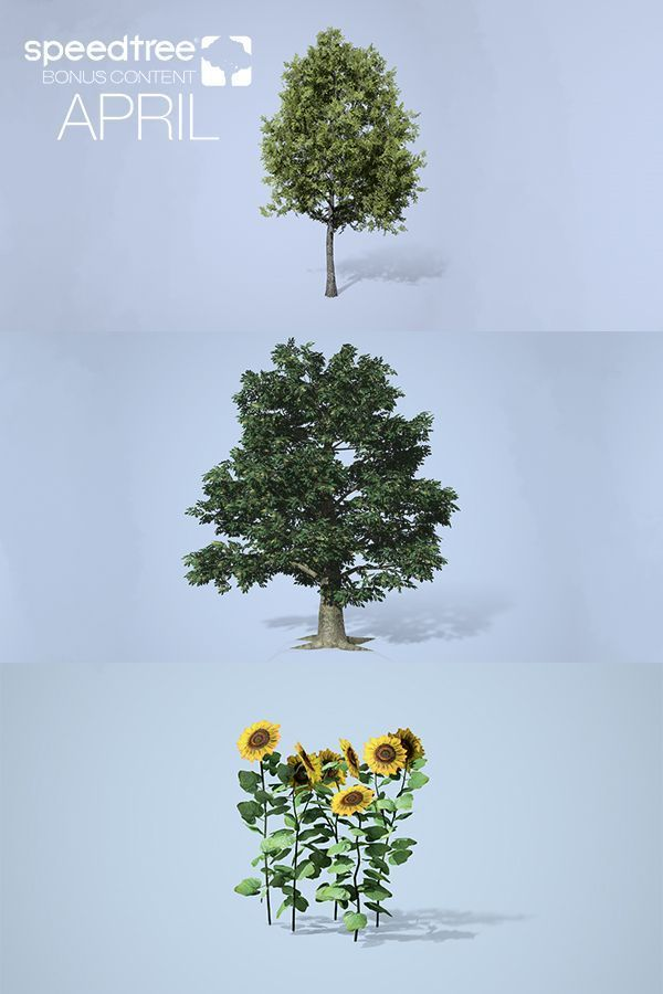 Pin by SpeedTree on On the SpeedTree Store | Store, Game