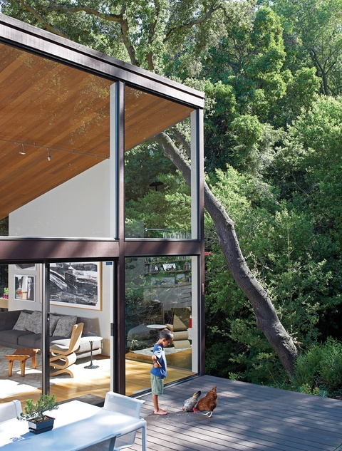 David Boone.Architects, Dreams Home, Home Design, Wood Ceilings, David Boone, Architecture, Undivided Intentions, Glass Houses, Glasses House