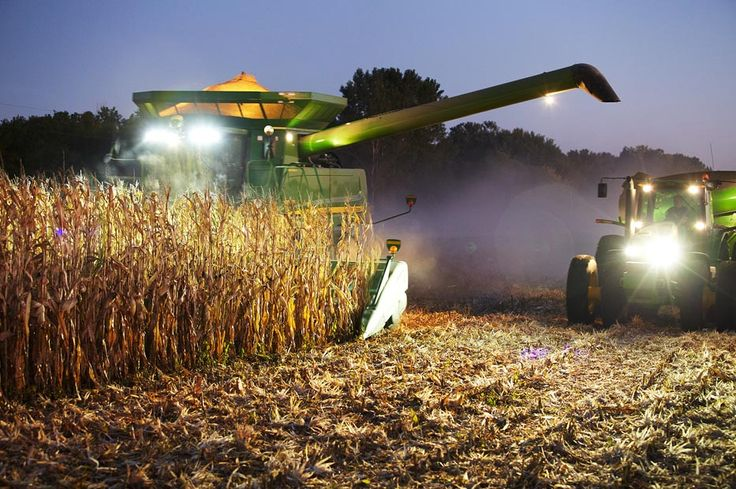 #Farming: A John Deere 9870 STS combine works the rows of corn as a John Deere 8530 tractor and Brent gravity box race forward to get under the unloading auger.