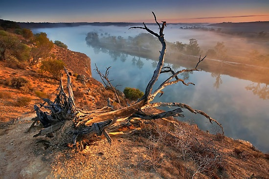 Early Morning by Bill Robinson  Maynards Lookout, Walker Flat .  Murray River, South Australia.