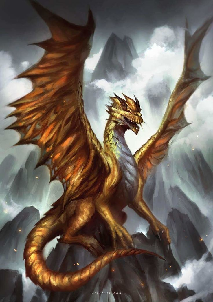 Best 25 Dragon artwork ideas on Pinterest Cool dragon drawings