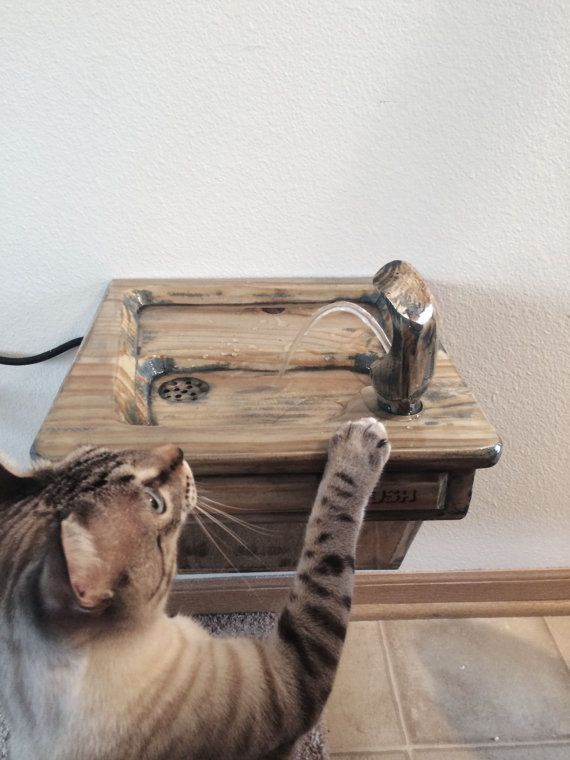 Maui and Milo NEED this! > #Cat drinking fountain | #CatastrophiCreations #Etsy