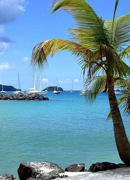 Martinique Fort De France - HD Travel photos and wallpapers