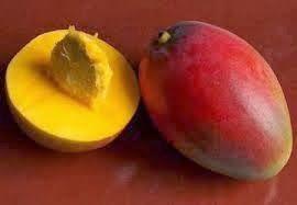 Vougelisha : Mango, owoc zimy