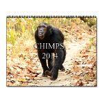 Chimps Calendar