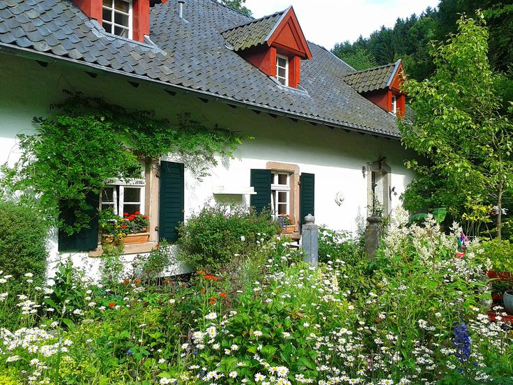 Verwandle deinen Garten in ein Blütenmeer ohne zusätzliche Arbeit.