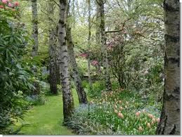 Image result for edna walling gardens