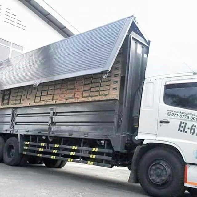 Unloading process our customer..  #unloadingtrucks #unloading #activities #customer #gudang #gudanggaram #logisticsspecialist #logisticscompany #logistics #vcocam #vscocamphotos #hdr #eureka #eurekalogisticscom #eurekalogistics