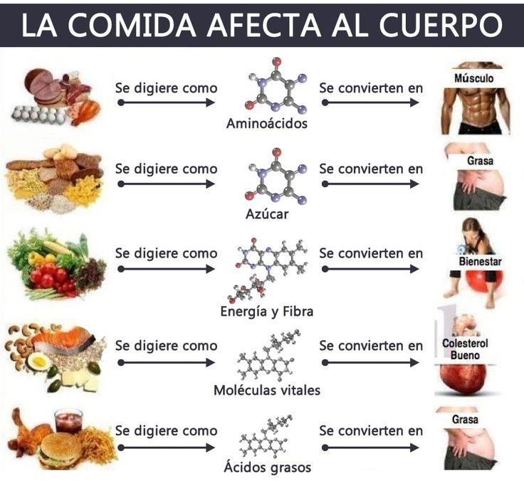 lista de alimentos con proteínas y grasas