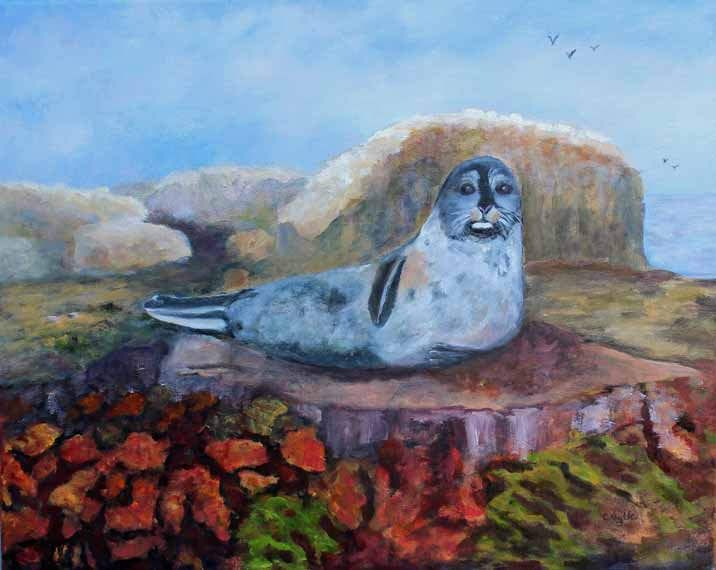 Sea Lion,British Columbia, Oil on Canvas,Oil Painting,Original Oil painting,Sea life Painting,Prints for Sale,Giclee,Gift Ideas,Carol Lytle by Lytlebitartisitic on Etsy