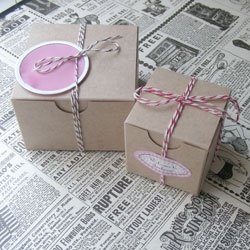 Favor Box Tied With Thin Grosgrain Ribbon Or Light Pink Twine
