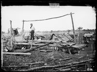 Holtermann Collection State Library of NSW - Pitsawing timber, Gulgong 1872