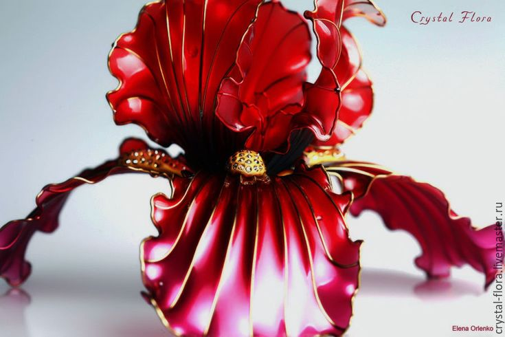 Transparent flower, Unusual jewelery for hair from Elena, Large red Iris (Crystal Flora, hair accessory, kanzashi, of synthetic resin and wire, American flowers, it is not kanzashi by Sakae, luxury jewelry, wedding decorations, wedding flowers, transparent flowers)