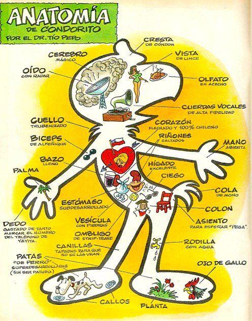 Anatomía de Condorito según Pepo