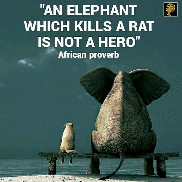 An elephant which kills a rat is not a hero. African proverb
