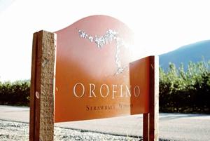 Orofino Vineyards: http://www.orofinovineyards.com/