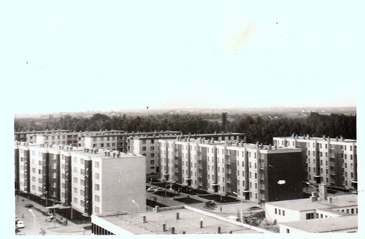 Szeged Olajos, Csorba, Sólyom u kb 1969