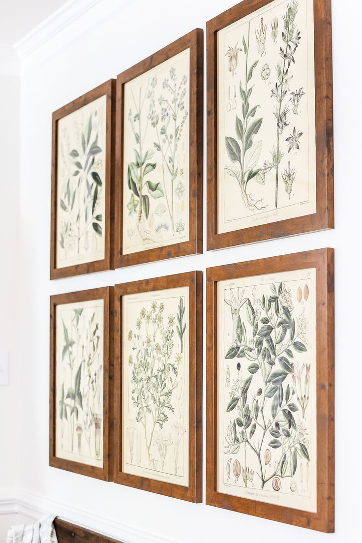 Botany Printable Art and a Wall Decor Hanging Trick | blesserhouse.com - A free download of botany printable art perfect for spring and summer, plus a wall decor hanging hack to make hanging frames quick and easy.