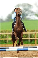 Improve Your Riding - Your Horse Magazine