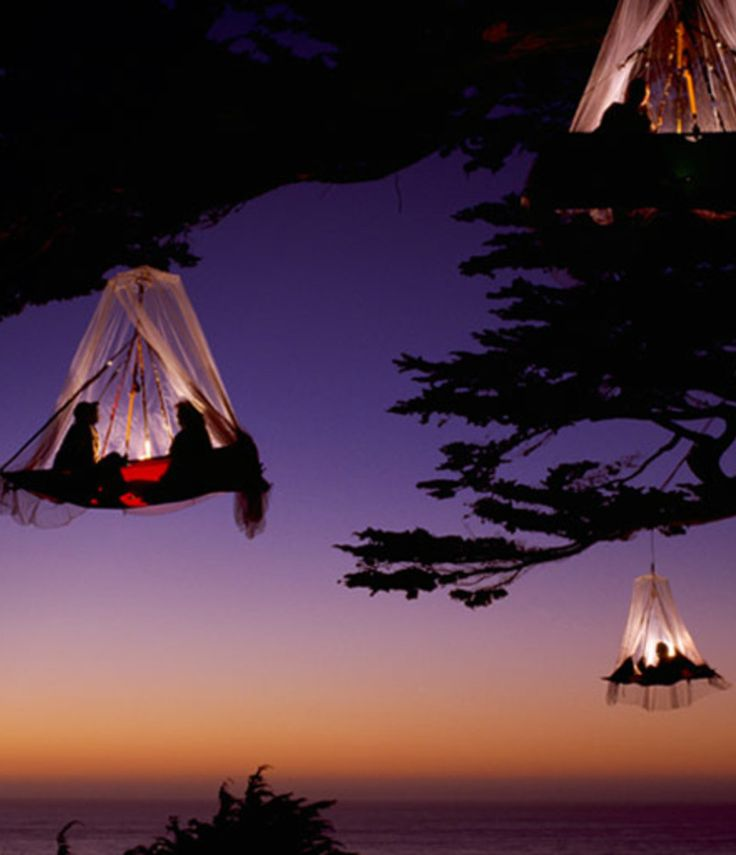 Tree camping in Elk, California, USA. I'm not really sure how this works but that is just cool!