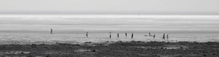 Schiermonnikoog  © annemarie hoogwoud photography