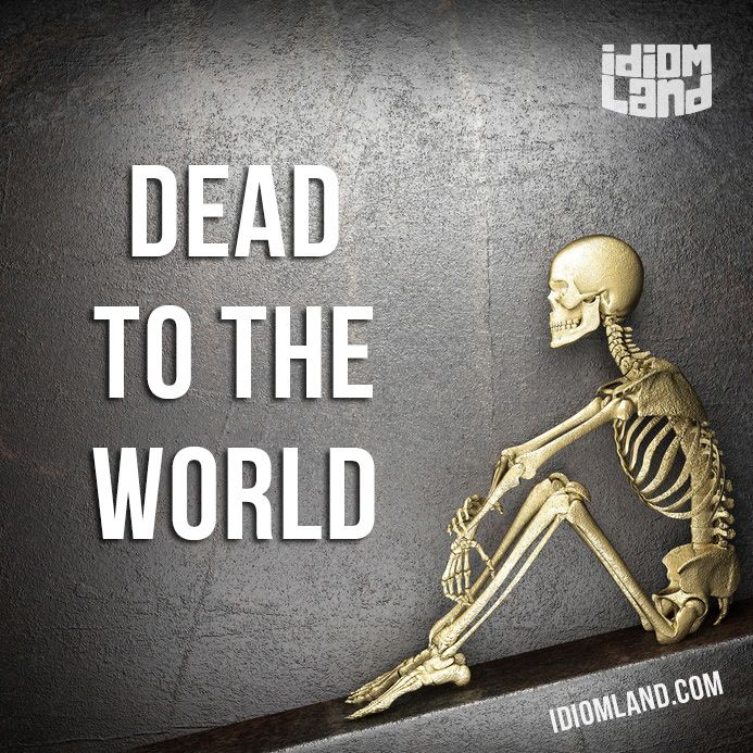 """""""Dead to the world"""" means """"to be sleeping very deeply and soundly"""". Example: She…"""