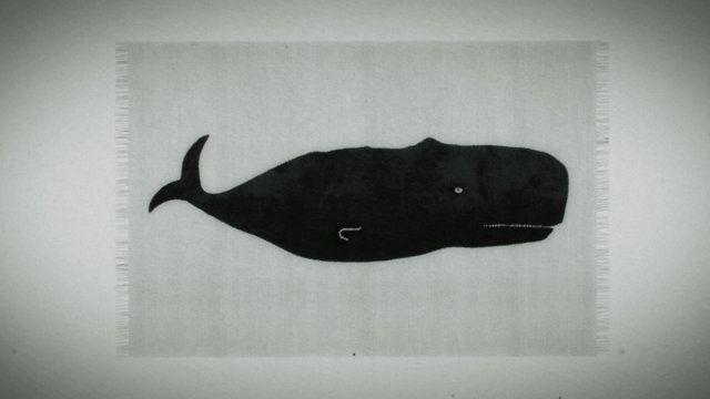 Whale the tourist - episode 2 #Nidi #Juma