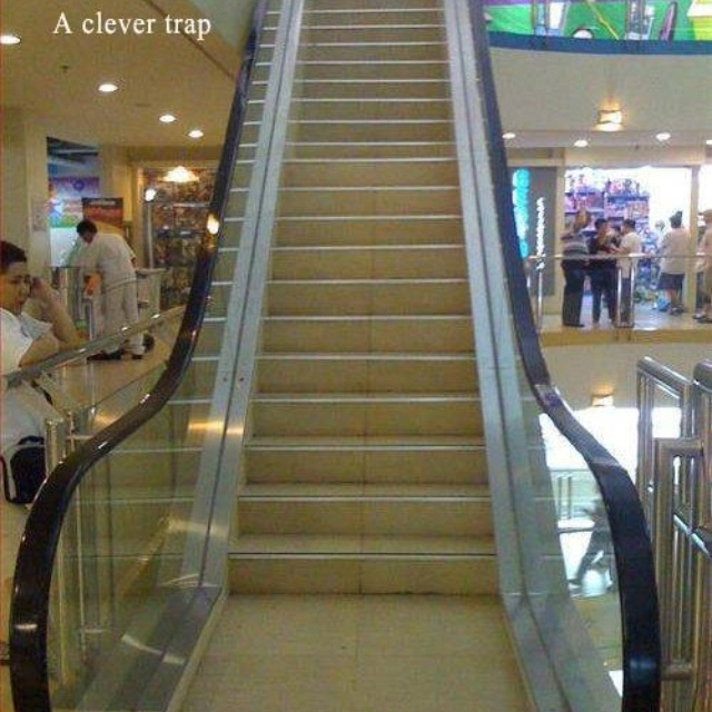 Funny Image, Stairs, Funny Pics, Funny Pictures, Well Plays, Funny Quotes, Funny Stuff, Funny Photos, Funnystuff