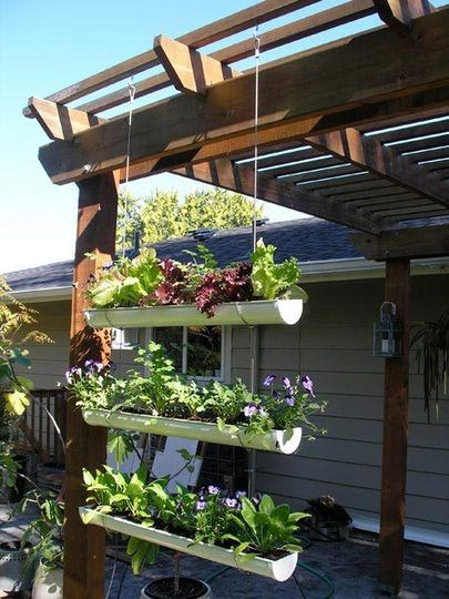 Hanging Gutter Garden////////  Plant Suggestions:  Arugula, spinach, swiss chard, kale and all kinds of lettuces  Annual herbs – cilantro, parsley, chives  Strawberries – buy bare roots to save money and make planting easier  Root Veggies – beets, radishes and maybe shallow carrot varieties like Tonda di parigi  Annual Flowers – marigolds, nasturtiums, pansies and violas