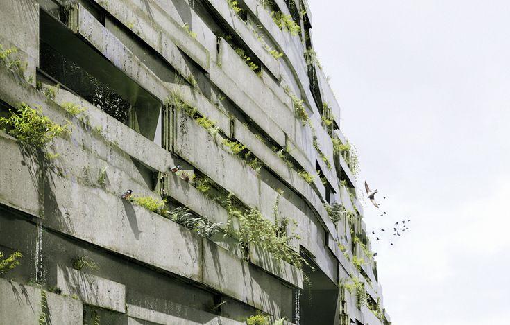 Les 280 meilleures images du tableau architecture v g tale for Architecture vegetale