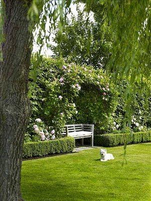 Low hedging & garden seat